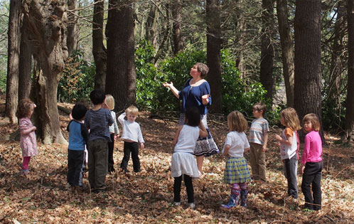 how to use holistic approaches in child care