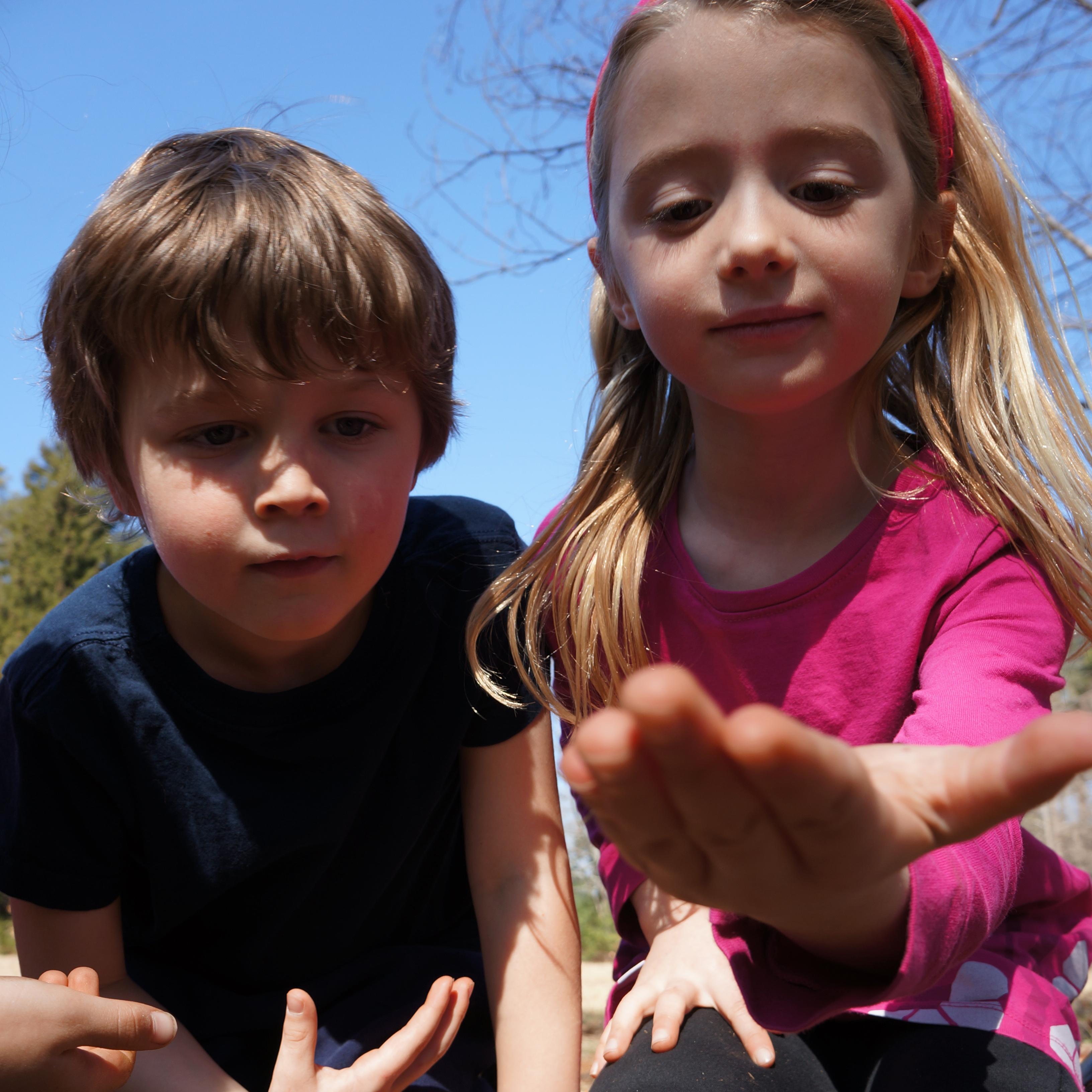 http://waldorfmoraine.org/we-pioneered-forest-kindergartens/